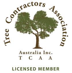 TCAA Licensed Member Logo